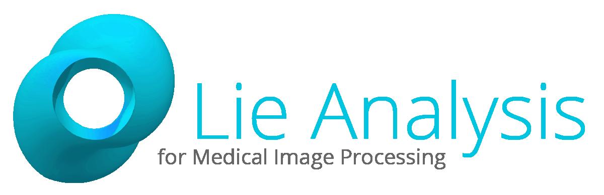 Lie Analysis Logo